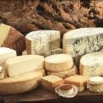 Esposizione di varie tipologie di formaggio