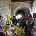 Inaugurazione della Mostra Mercato alla presenza dell'Onorevole Maria Elena Boschi e della Presidente della Regione Umbria Catiuscia Marini-11
